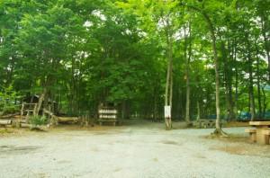 ぽよよんの森 オートキャンプ場